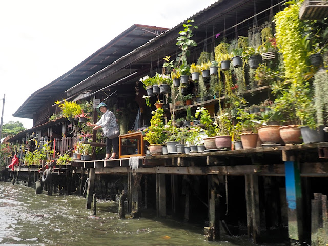 Stilt houses with plants on the canals of Bangkok, Thailand