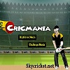 Play Cricmania game