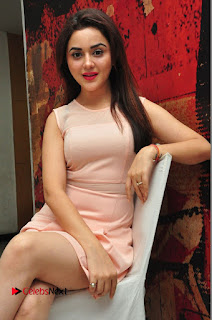 Actress Ragini Nandwani Pictures in Short Dress at Siddhartha Movie Success Meet  0109.JPG