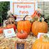 Make a Kids Pumpkin Patch in Your Backyard