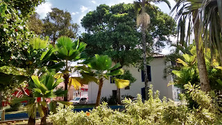 Igreja matriz, em Itanhaém