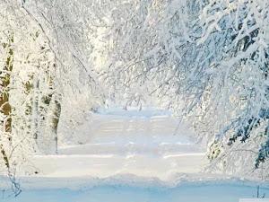 Sfondi Invernali Piu Belli Per Pc Con Neve E Giaccio Navigaweb Net