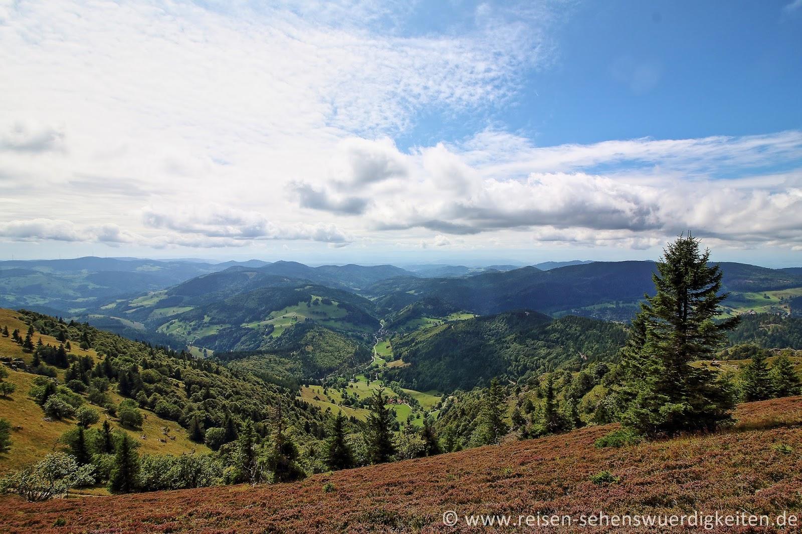 Schwarzwald Reisebericht