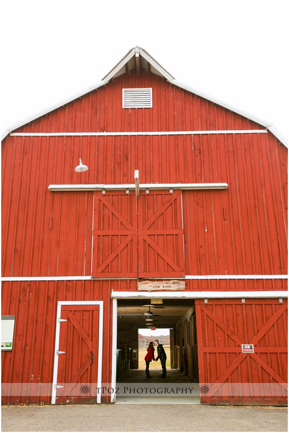Kinder Farm Park Engagement Photos