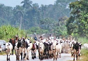 fulani herdsmen flying boat asaba river niger
