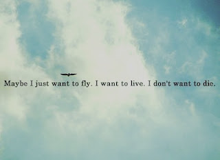 Oasis Maybe I just want to fly