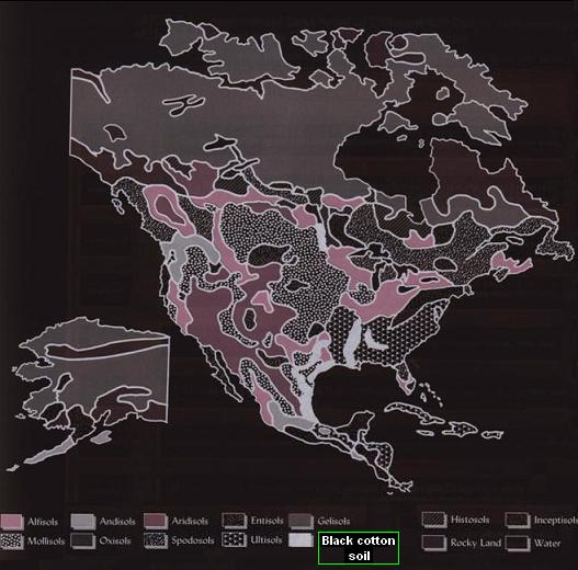 Distribution of black cotton soil around North America