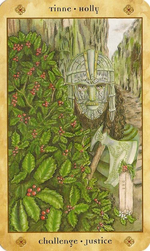 Tarot Notes: REVIEW: Voice Of The Trees