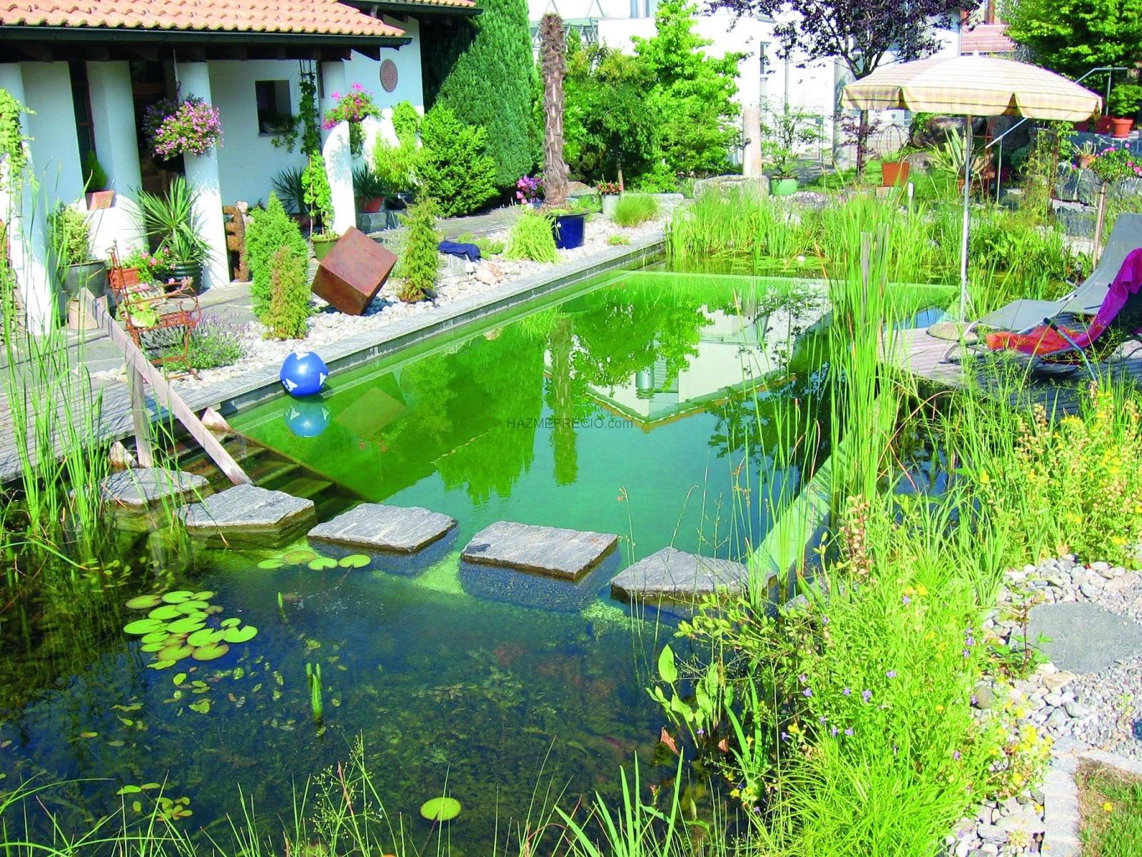 como vern en las imgenes que les he dejado a lo largo del post hay diferentes maneras de armar estas piscinas algunas son ms elegantes - Piscinas Ecologicas