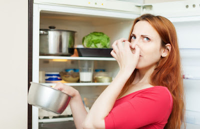 Kulkas atau refrigerator yang kurang terjaga kebersihannya seringkali menimbulkan bacin busu 8 Cara Menghilangkan Bau Busuk Dalam Kulkas