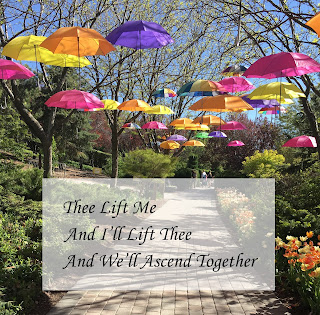 colorful umbrellas hanging in a park with the text 'thee life me and i'll life thee and we'll ascend together'