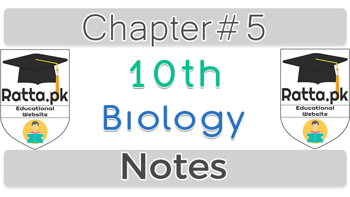 10th Biology Chapter 5 Reproduction Notes