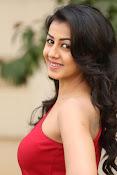 Nikki galarani latest sizzling pics-thumbnail-13