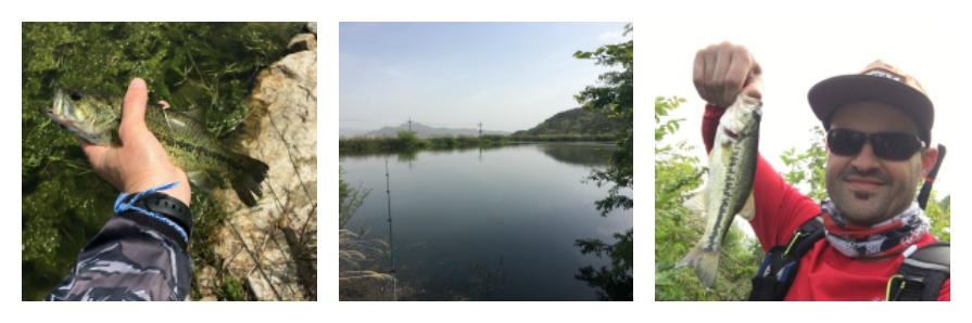 hapcheon, fishing, fishing in korea, chasingkm, bass