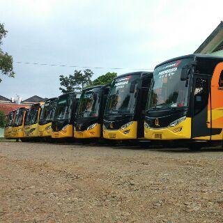 Qitarabu trans armada bus