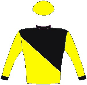 Tilbury Fort - Jockey Silks - Horse Racing - Yellow and black halved diagonally, black cuffs, yellow sleeves and cap