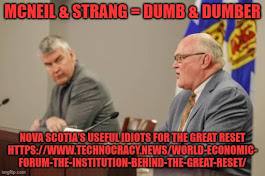 click pic - Dumb and Dumber Downeast