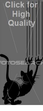 s400/cat-scratch_-BWBW1100