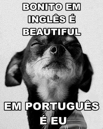 O que é star em portugues