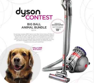 Dyson Big Ball Animal Bundle Contest