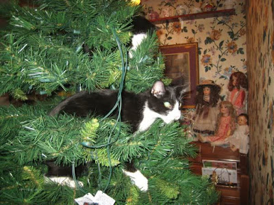 Kitten perched in the branches of a Christmas tree