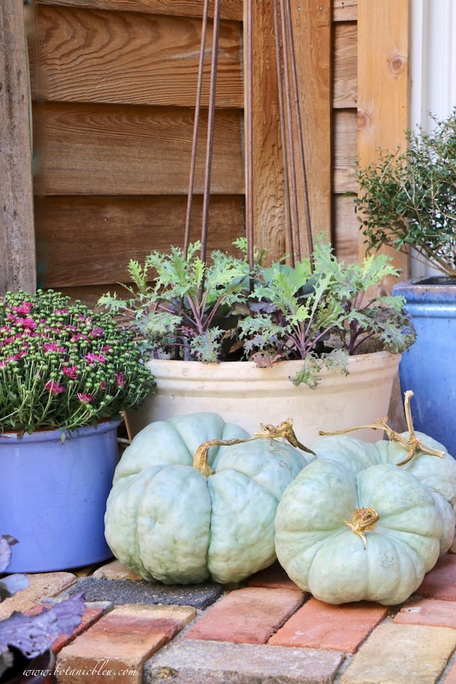 fall front porch decorating ideas with color to match front door