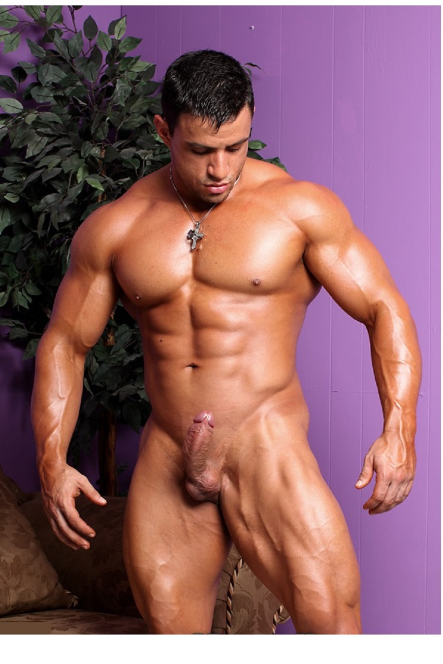 Authoritative muscle hunks with erections