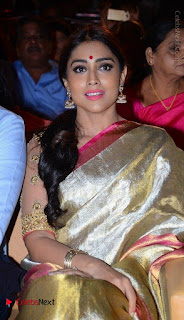 Actress Shriya Saran New Images in Silk Saree at Gautamiputra Satakarni Audio Launch  0007.jpg