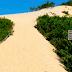 Itaúnas tem dunas, lindas praias e muito forró