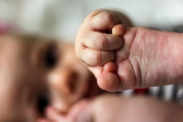 Image: Baby, by Daniel Nebreda on Pixabay