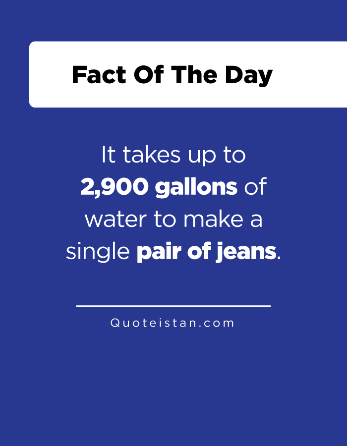 It takes up to 2,900 gallons of water to make a single pair of jeans.