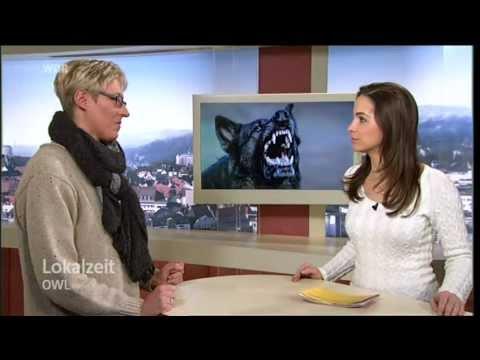 Wdr Lokalzeit Bielefeld