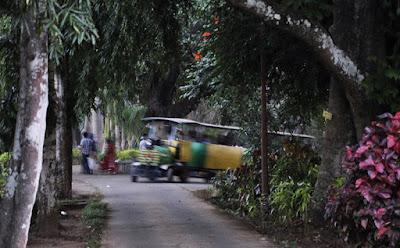Toy train at Padmapuram Garden, Araku