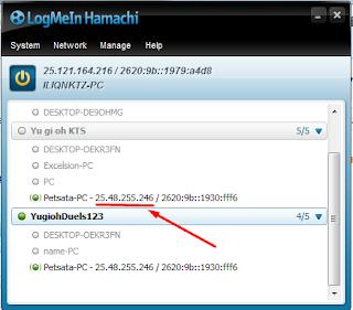 Hamachi, Networks