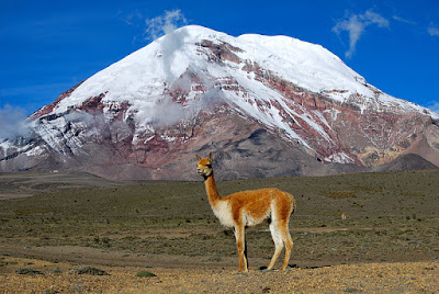 הר צ'ימבורסו