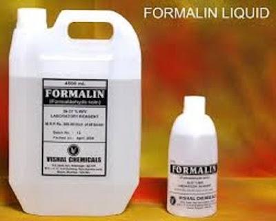 Produksi formalin - berbagaireviews.com