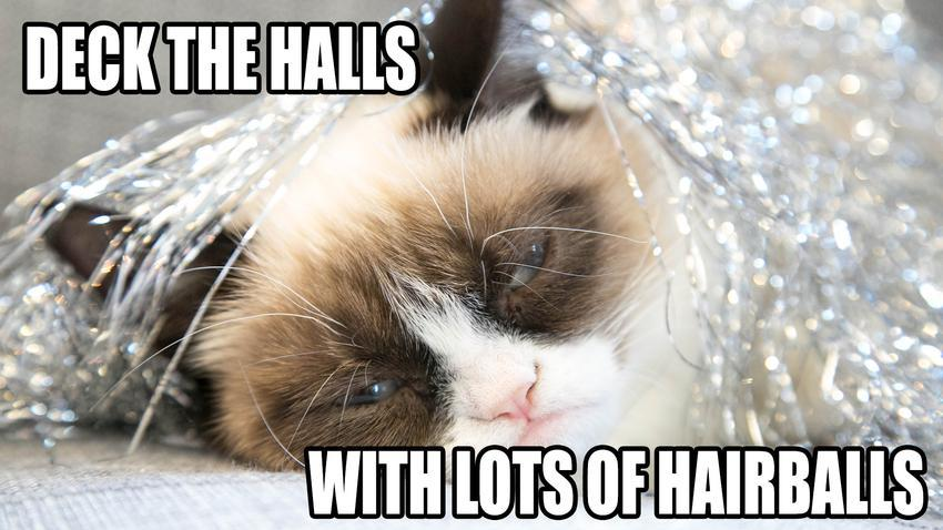 Happiness is a hot pierogi: Grumpy Cat Wishes You Happy ...