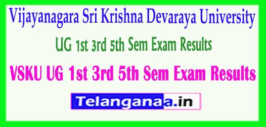 VSKU UG Vijayanagara Sri Krishna Devaraya University UG 1st 3rd 5th Sem Exam Results 2018