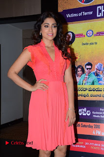 Actress Shriya Saran Pictures in Pink Short Dress at Republic Hindu Coalition (RHC) Charity Concert Press Meet .COM 0058.JPG