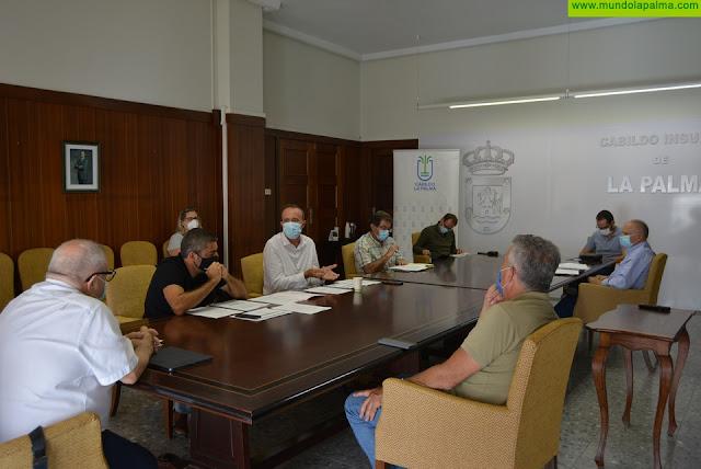 El Cabildo destaca la importancia de las Mesas Sectoriales de Turismo en el marco de la nueva normalidad en la Isla Bonita