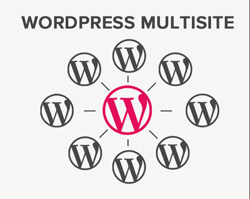 What is wordpress multisite ?
