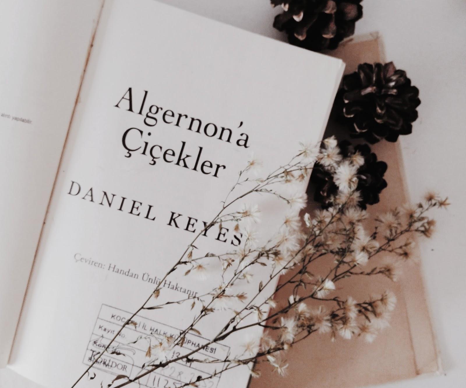 algernon'a çiçekler, daniel keyes, flowers for algernon