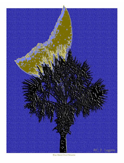 https://c-f-legette.pixels.com/featured/blue-moon-over-palmetto-c-f-legette.html