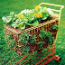 A vegetable garden in a shopping cart