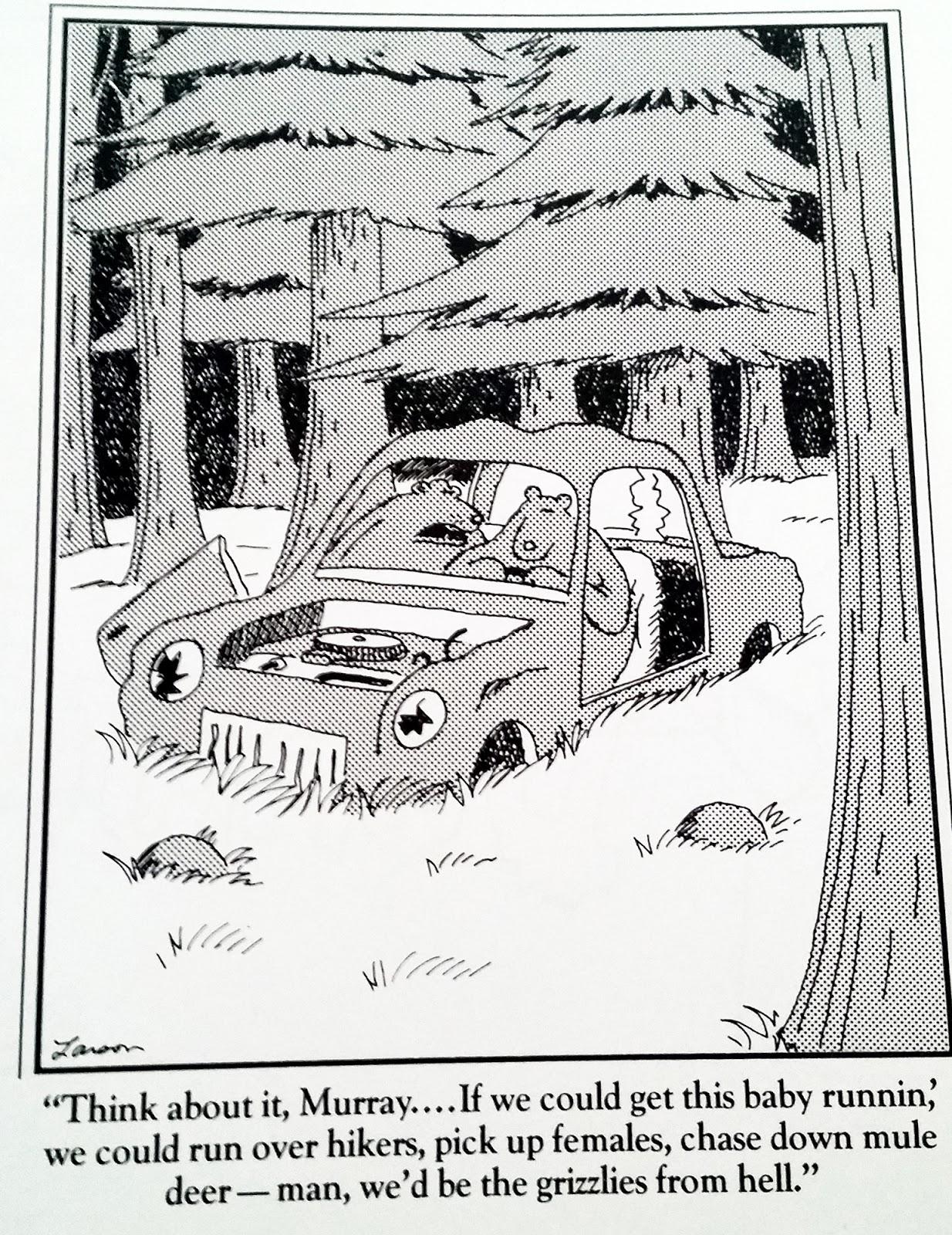 Gary Larson Bear Cartoons