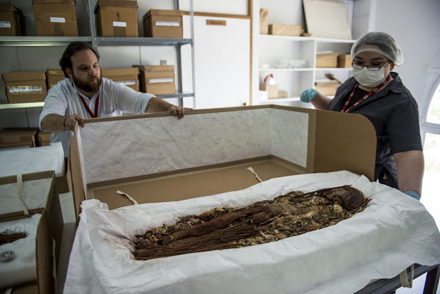 Scans unveil secrets of world's oldest mummies