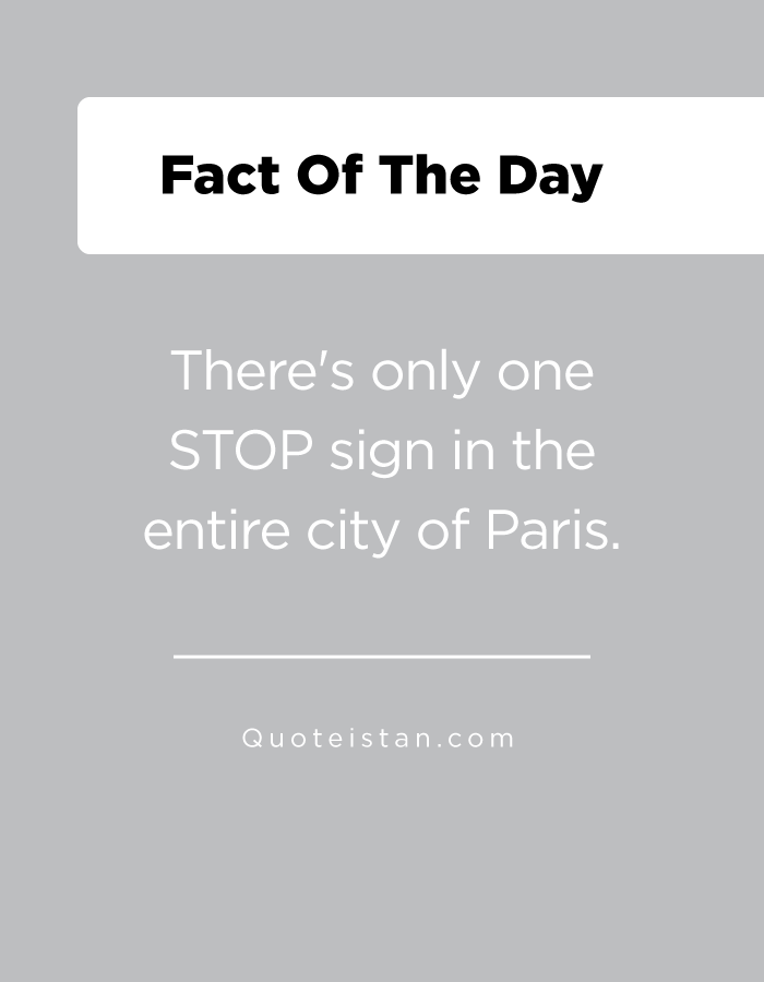 There's only one STOP sign in the entire city of Paris.