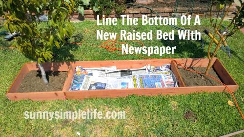 making a raised bed garden, newspaper in garden