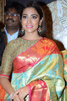 Shriya Saran Looks Stunning in Silk Saree at VRK Silk Showroom Launch Secundrabad ~  Exclusive 058.JPG