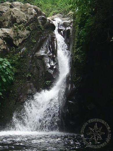 Carlota Negros Resort La